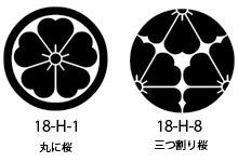 18-H-1桜紋.jpg