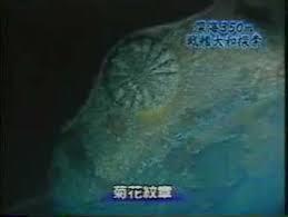 海底に眠る大和.jpg
